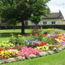 Jardin - Location de vacances - Saint-Didier-sur-Chalaronne