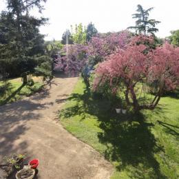 Entrée jardin - L'Igloo - Location de vacances - Saint-Bernard