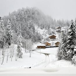 Le Crêt de la Neige- Le Grand Colombier, Cuisine - Location de vacances - Lélex