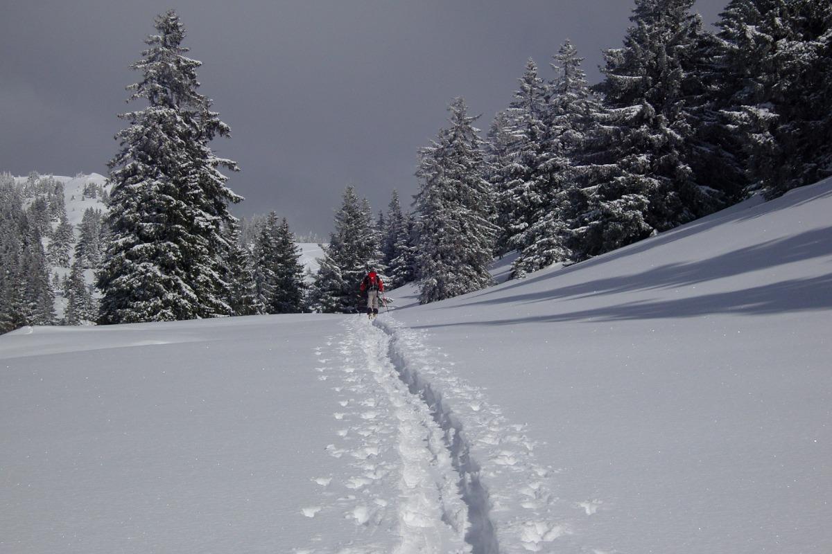 Les Berlicants - Mijoux saison hiver - Location de vacances - Mijoux