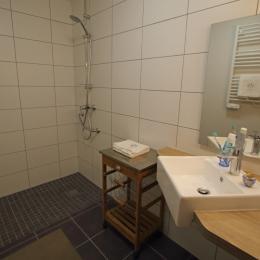 salle d'eau PMR- WC PMR séparé - Location de vacances - Mijoux