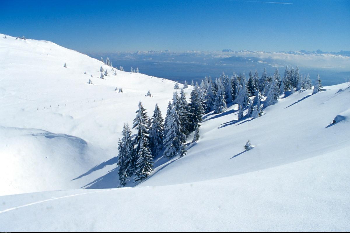 Appartement le Valserine - Cuisine - Location de vacances - Lélex