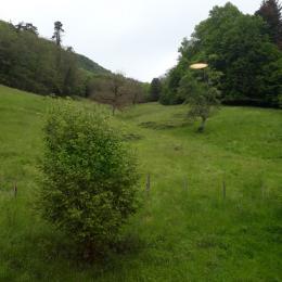 Vue coté montagne  - Chambre d'hôtes - Saint-Rambert-en-Bugey