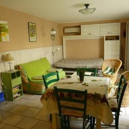 la pièce et son couchage ouvert - Location de vacances - Carcassonne
