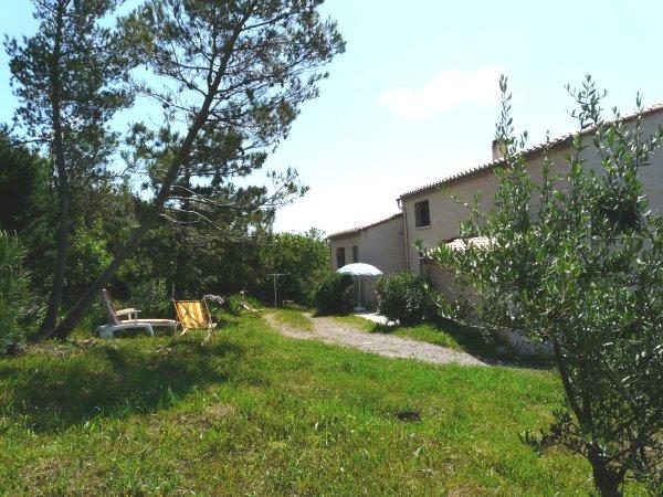 Jardin à l'arrière de la maison - Location de vacances - Caunes-Minervois