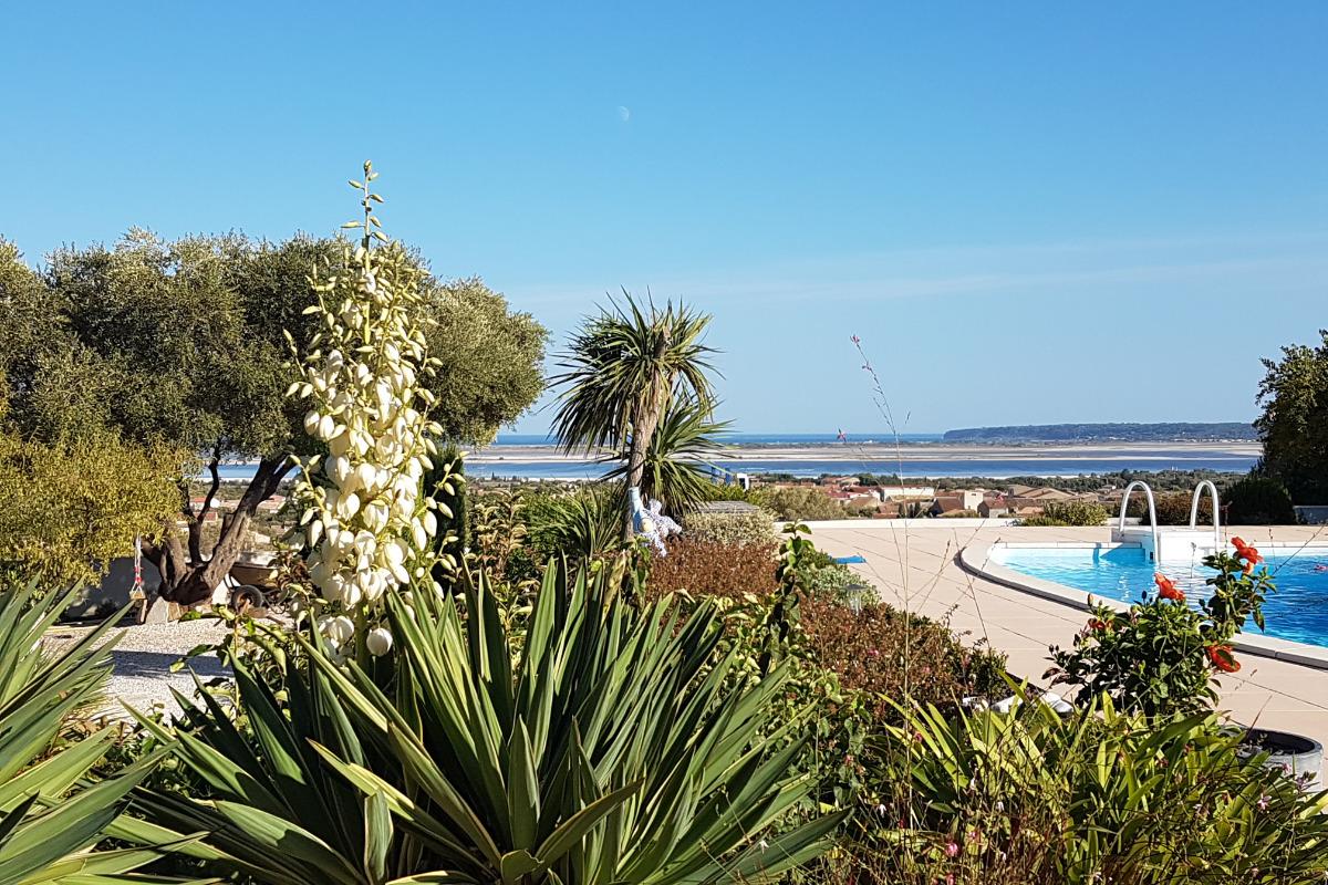 la vue sur mer - Location de vacances - La Palme