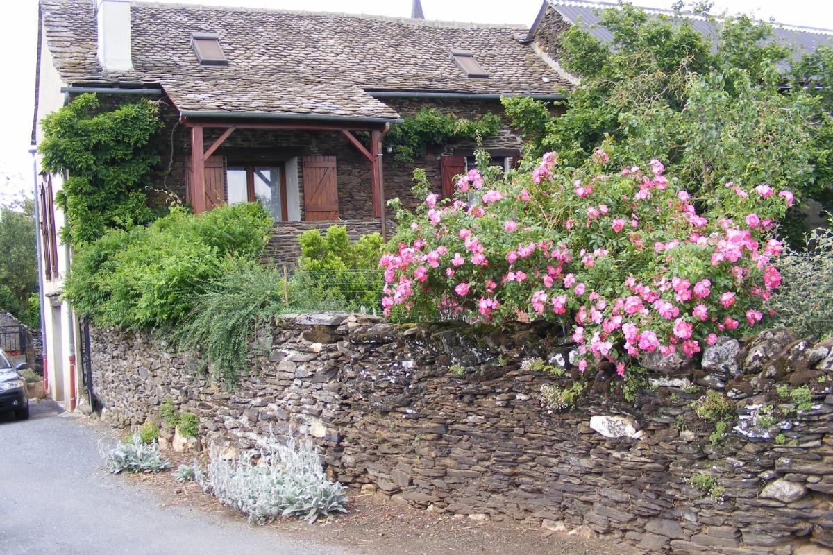 Jardin : les plantes aromatiques à la Fenial : laurier, persil, romarin, basilic .... - Location de vacances - Sainte-Juliette-sur-Viaur