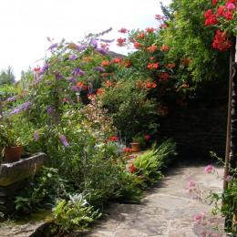 la cuisine américaine - Location de vacances - Sainte-Juliette-sur-Viaur