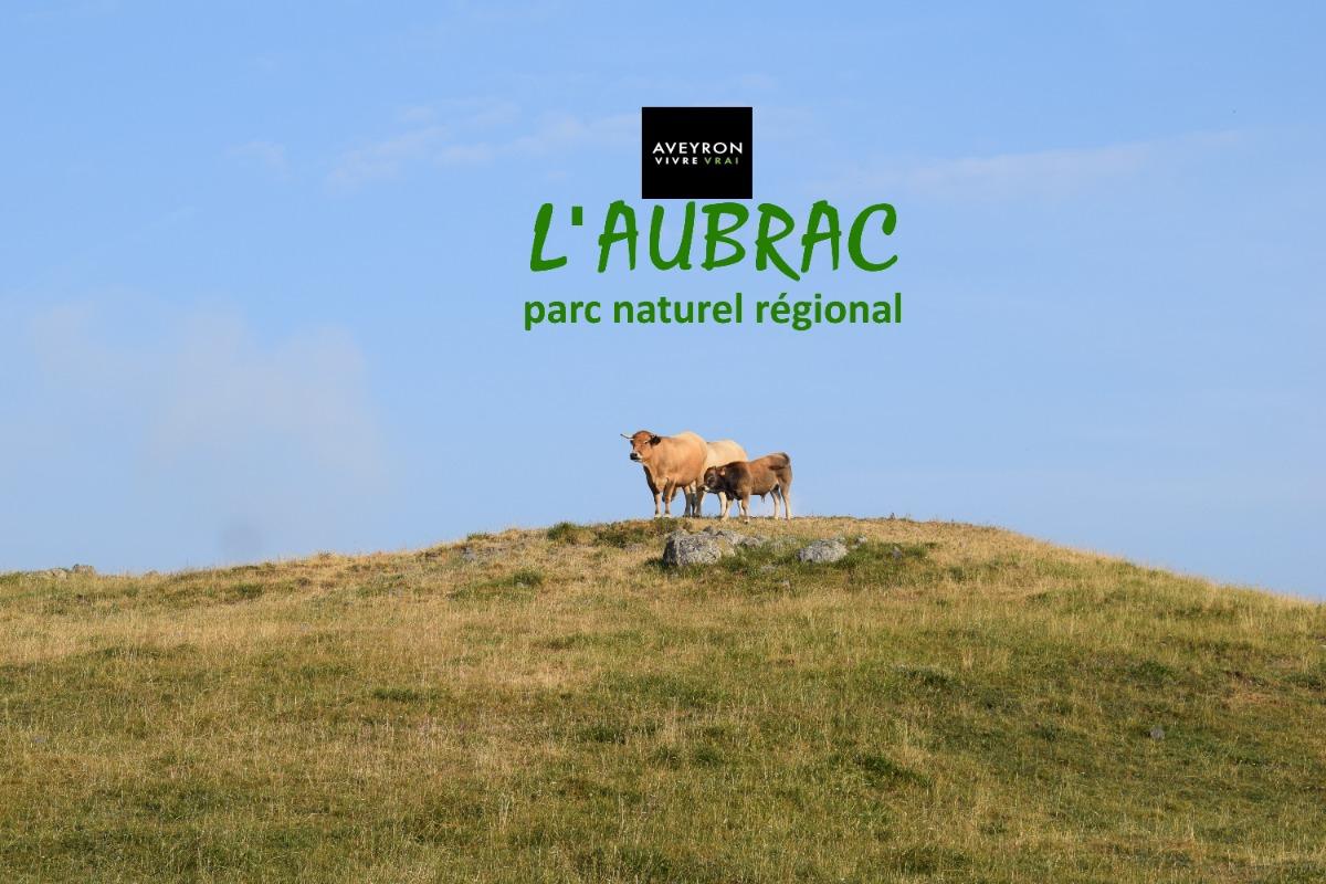 Le studio Nature d'Aubrac de Gitaubrac - Location de vacances - Laguiole