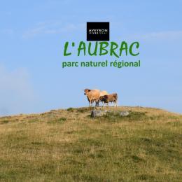 Le studio Nature d'Aubrac de Gitaubrac - Location de vacances -