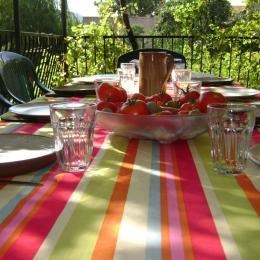 Terrasse - Location de vacances - Saint-Rome-de-Tarn