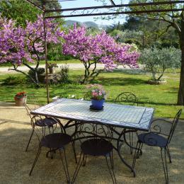 Terrasse au printemps - Location de vacances - Saint-Rémy-de-Provence