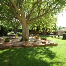 la terrasse et sa cuisine d'été - Location de vacances - Jouques