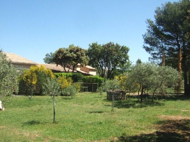 le jardin arborée et les locations - Location de vacances - Eygalières