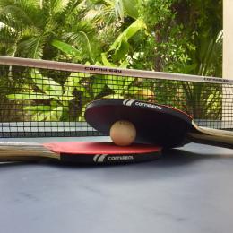 Table de ping pong - Location de vacances - Port-Saint-Louis-du-Rhône