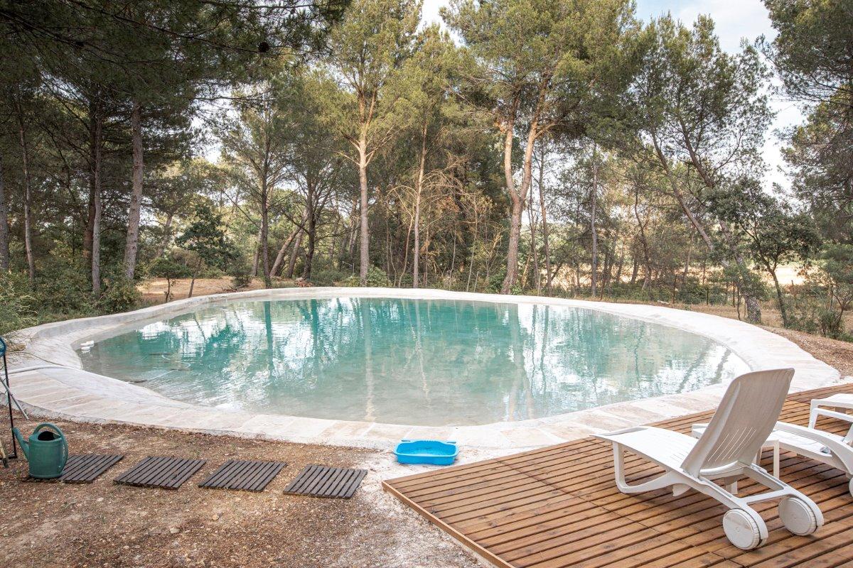 Bassin de baignade - Chambre d'hôtes - Lambesc