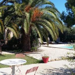 Jardin paysagé de 1 500 m² avec piscine privée - Location de vacances - Arles