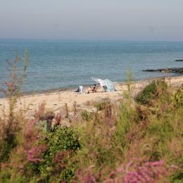 Superbe vue mer panoramique sur la magnifique plage Juno Beach (mouettes, bateaux, chevaux...) balcon chaises de plage barbecue - Location de vacances - Bernières-sur-Mer
