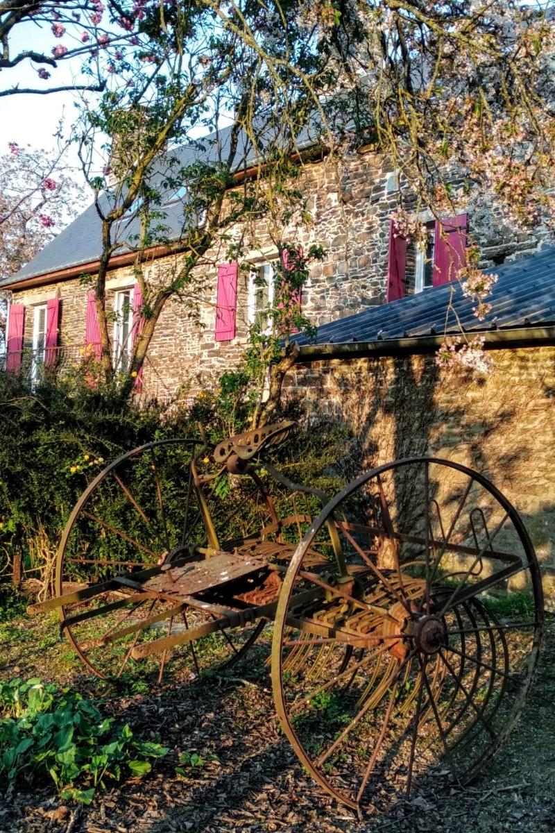 - Location de vacances - Saint-Rémy