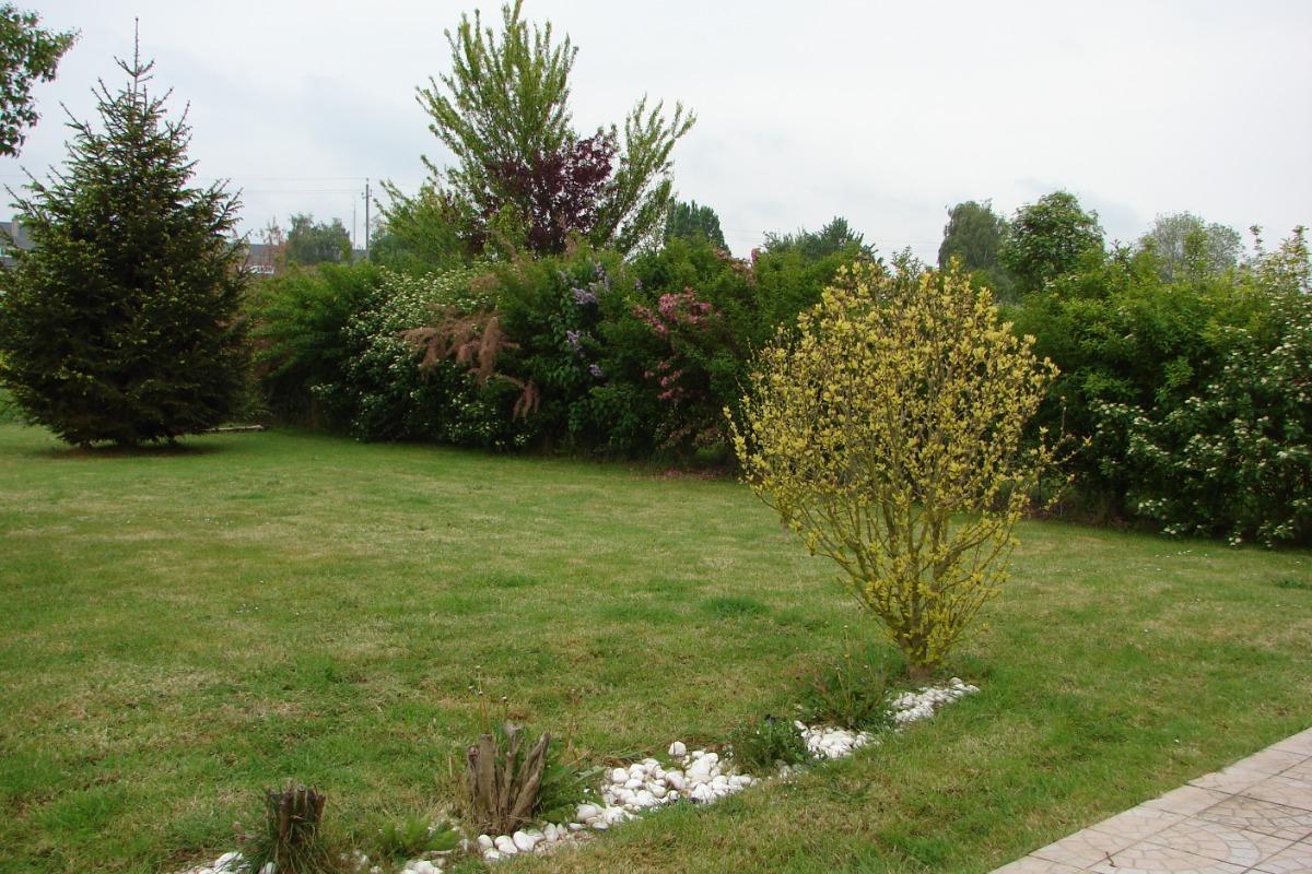 jardin vu de la terrasse - Location de vacances - Bayeux