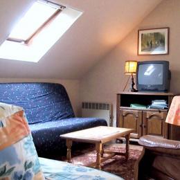 salon - Location de vacances - Léaupartie