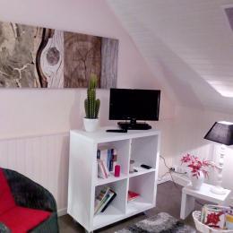 Le coin salon avec téléviseur, lecteur DVD, bibliothèque, documetation - Location de vacances - Osmanville