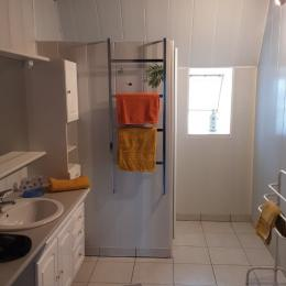 Salon, cuisine à l'américaine, salle à manger et porte fenêtre qui donne sur le jardin.  - Location de vacances - Saint-Mamet-la-Salvetat