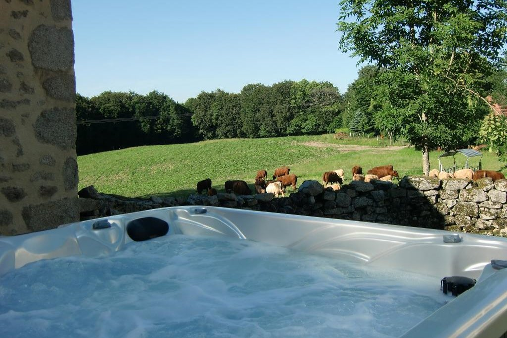 gite auvergne spa - Location de vacances - Roumégoux