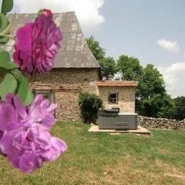 salon avec TV + WIFI - Location de vacances - Roumégoux
