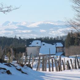 La vue sur le Sancy en hiver - Location de vacances - Champs-sur-Tarentaine-Marchal