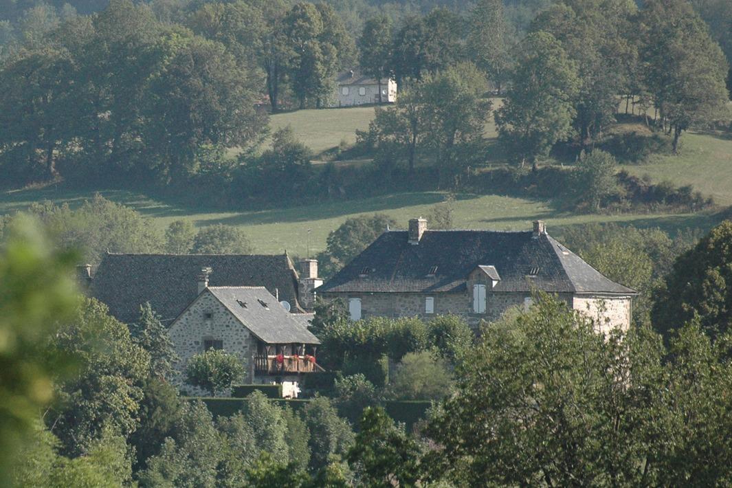 vue d'ensemble de la propriété - Location de vacances - Raulhac