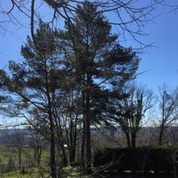 votre  pinède - Location de vacances - Saint-Cirgues-de-Malbert