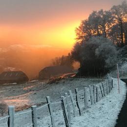 terrasse sud donnant sur espace vert  - Location de vacances - Vèze