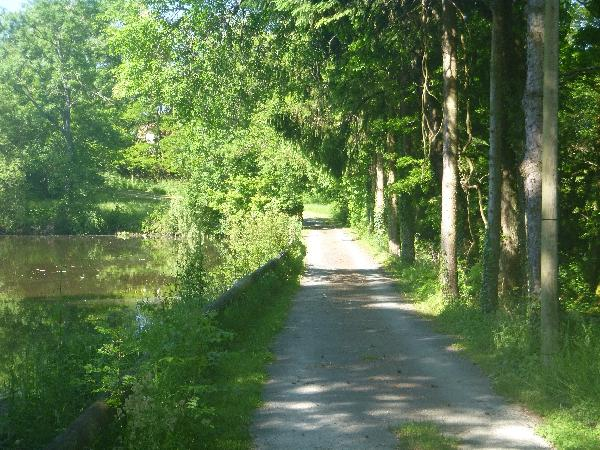 Le chemin d'accès - Ambernac - Location de vacances - Ambernac