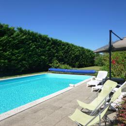 Chambre Perroquets - Location de vacances - Angoulême