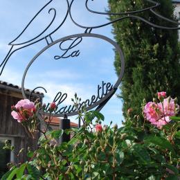 Un jardin charmant - Location de vacances - Fouras