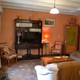 le séjour chaleureux et spacieux ouvert sur la terrasse - Location de vacances - Rochefort