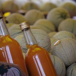melon charentais - cmt17 ©e.coeffe - Chambre d'hôtes - Bourcefranc-le-Chapus