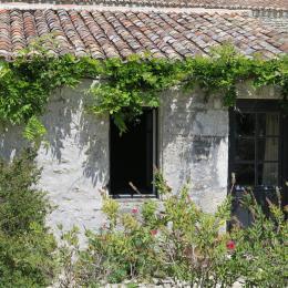 La maison de Babin - Chambre d'hôte - Saint-Pierre-d'Oléron