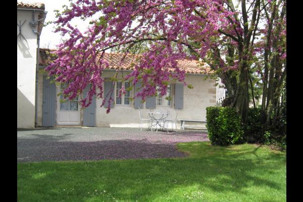 Cottage : suite familiale indépendante et accessible handicap - Chambre d'hôte - Puyravault