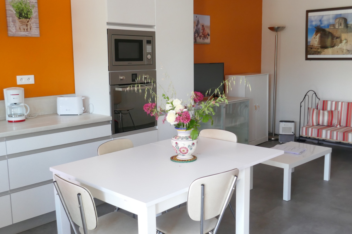 Donnant sur la terrasse, la cuisine ouverte sur une grande pièce à vivre - Location de vacances - Semussac