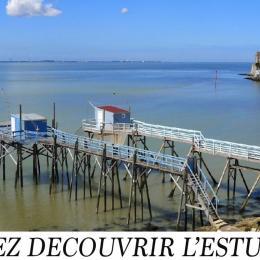 L'Estuaire de la Gironde - Location de vacances - Barzan