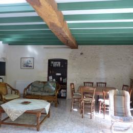 Notre grand espace de vie - Location de vacances - Barzan