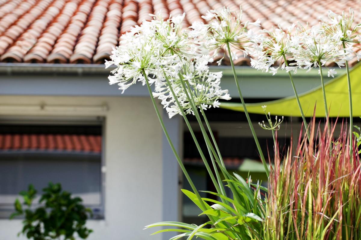 Jardin paysager - Location de vacances - Saujon