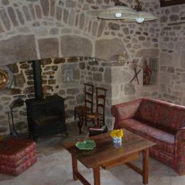 Cheminée et Salon - Location de vacances - Bassignac-le-Haut