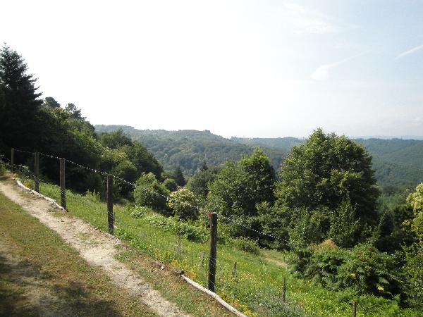 vue sur la campagne - Location de vacances - Gimel-les-Cascades