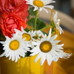 les fleurs du jardin en bouquet de Bienvenue - Location de vacances - Larche