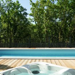 Piscine chauffée (avril - novembre) 8m x 2,75m x 1,30m - Location de vacances - Chartrier-Ferrière