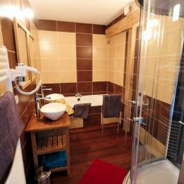 La Conviviale - salle de bain et douche - Location de vacances - Fontaine-lès-Vervins