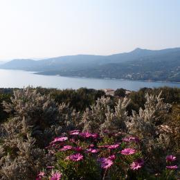 - Location de vacances - Propriano
